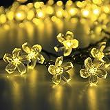 solar Fairy string lights 50 Led Blossom Flower Christams Lights for Outdoor Garden Patio(Warm White)
