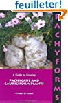 Pachyforms: A Guide to Growing Pachyc...