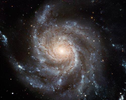 Hubble Space Telescope Photo Spiral Galaxy M101 Nasa Photos 8X10