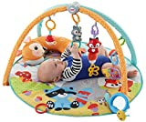 Fisher Price Moonlight Meadow Deluxe Play Baby Gym