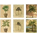 6 Tropical Palm Tree Art Prints Beachy Feel Home Decor