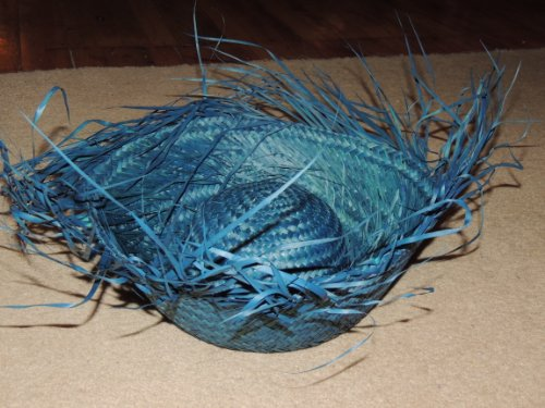 Hat - Birds Nest - Blue Hawaiian Luau Party Accessory