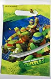 Teenage Mutant Ninja Turtles Loot Bags 8 Bags