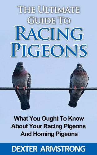 Dexter Armstrong - The Ultimate Guide To Racing Pigeon: What Everybody Ought To Know About Racing Pigeons (English Edition)