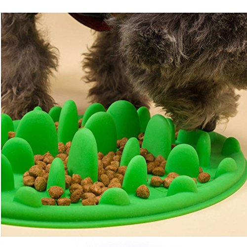 Freshlove Slow Pet Feeder Anti-choke Pet Bowl for Feeding Dogs & Cats - Green(25 * 18cm) (Cat Slow Feeding compare prices)