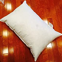 Eco-Friendly Pillow Form - 24 x 36