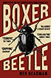Boxer, Beetle Ned Beauman
