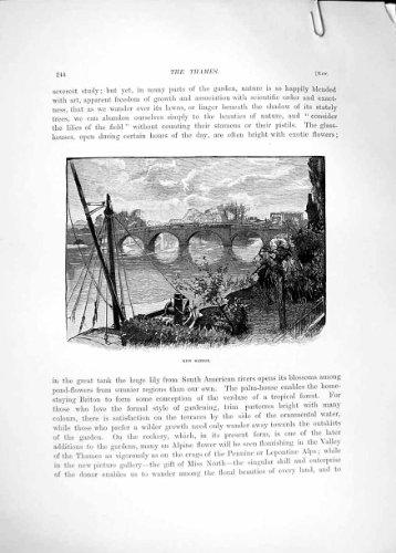Old Original Antique Victorian Print *3475 Pagoda Kew Gardens Bridge River Thames 1885 Cassell 210Re331