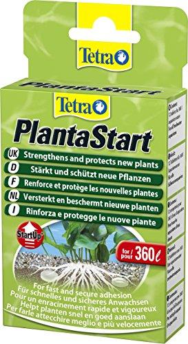 tetra-146839-plantastart