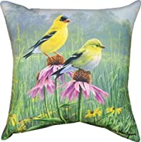 Manual Woodworkers and Weavers Indoor/Outdoor Pillow, Yellow Finch Field by James Hautman, 18-Inch from Manual Woodworkers Bedding/Bath