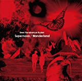 Supernova-9mm Parabellum Bullet