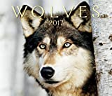 img - for Wolves 2017 book / textbook / text book