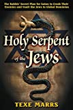 img - for Holy Serpent of the Jews: The Rabbis' Secret Plan for Satan to Crush Their Enemies and Vault the Jews to Global Dominion book / textbook / text book