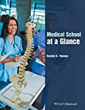 Medical School at a Glance