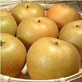 紀州 和歌山の 梨 豊水品種 4kg 【10玉~11玉】 ギフト