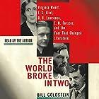 The World Broke in Two: Virginia Woolf, T. S. Eliot, D. H. Lawrence, E. M. Forster and the Year That Changed Literature Hörbuch von Bill Goldstein Gesprochen von: Bill Goldstein