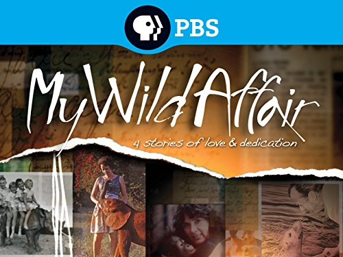 My Wild Affair Season 1