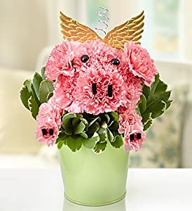 1-800-Flowers - Piggy Flower Pail By 1800Flowers