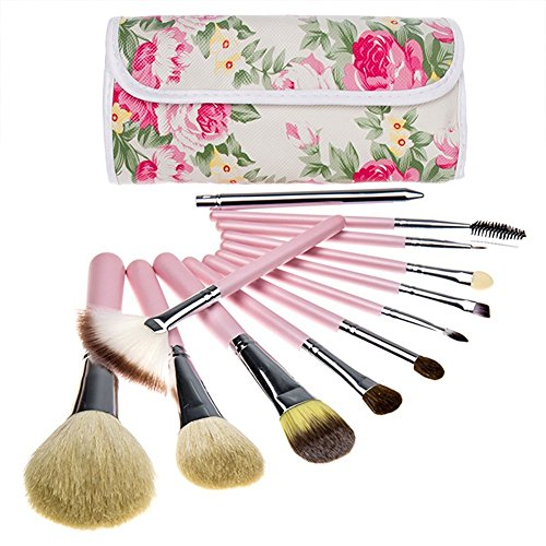 BeautyKate Pro 12 Pcs Goat Hair Makeup Cosmetics Brushes Set Kits with Rose Pattern Case Bag (Pink Handle) (Goat Hair Make Up Brushes compare prices)