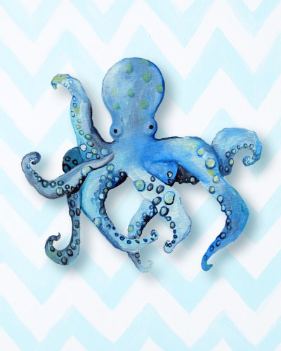 Cici Art Factory Paper Print Wall Hanging, Octopus