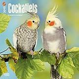 Cockatiels 2015 Calendar