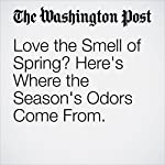 Love the Smell of Spring? Here's Where the Season's Odors Come From. | Ben Guarino