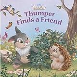 Disney Bunnies: Thumper Finds a Friend