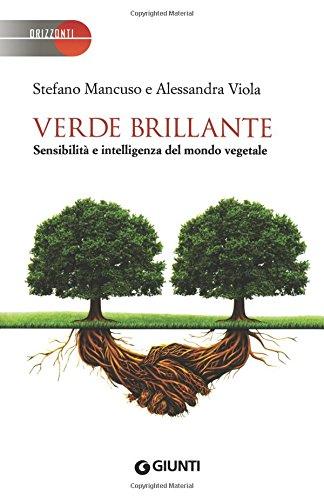 book Alejandra