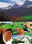 Vaches de montagne, montagnes de vaches