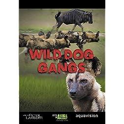 Gangland Killers : Wild Dog Gangs