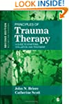 Principles Of Trauma Therapy:A Guide...