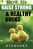 How To Raise Strong & Healthy Ducks: Quick Start Guide (How To eBooks) (Volume 49)
