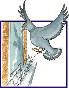 BirdBan anti perching bird spikes - 2 metre pack (6 x 330mm strips)