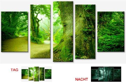images-sur-toile-motif-5-pieces-les-arbres-dans-la-foret-startonighttotal-170-cm-x-90-cm-nature-tabl