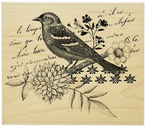 Hero Arts Mounted Rubber Stamps, 3.25 by 3.75-Inch, Bird Collage