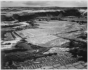 Adams - Corn Field Indian Farm near Tuba City Arizona 1941 2 peel & stick decal, 12 X 9.5