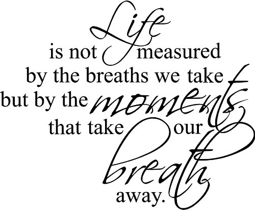 "23""X28"" Life Is Not Measure By The Breaths We Take But By The Moments That Take Our Breath Away Wall Art Vinyl Decals Letters Home Love Decor front-686036"