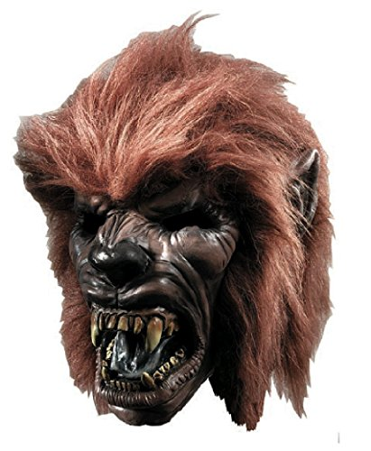Rubie's Costume Co Werewolf with Hair Mask Costume