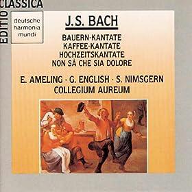"""Cantata No. 211: Schweigt stille, plaudert nicht, BWV 211, """"Coffee Cantata"""": Nun geht und sucht der alte Schlendrian (Recitativo)"""