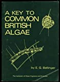 img - for Key to Common British Algae book / textbook / text book