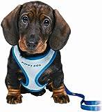 Trixie 15568 Puppy Harness, 23-34 cm L: 2 m, Blue