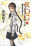 RDG6 レッドデータガール    星降る夜に願うこと (カドカワ銀のさじシリーズ)