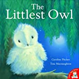 The Littlest Owlby Caroline Pitcher