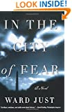In the City of Fear: A Novel (Norton Paperback Fiction)
