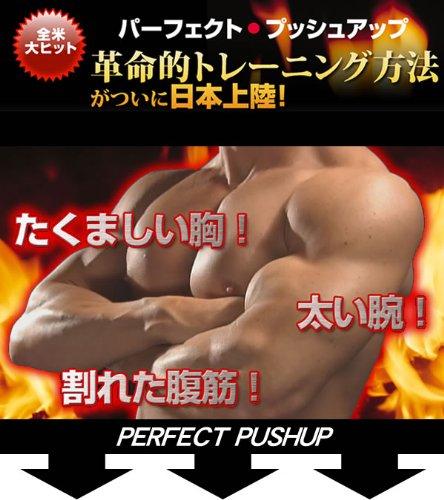 送料無料★アナタのボディを変える感動の21日間筋肉トレーニング『パーフェクトプッシュアップ(DVD付)』