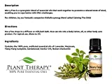 Worry-Free-Stress-Free-Synergy-Pre-diluted-Essential-Oil-Roll-on-10-Ml-13-Fl-Oz-Ready-to-Use-Blend-Of-Lavender-Marjoram-Ylang-Ylang-Sandalwood-Vanilla-and-Roman-Chamomile