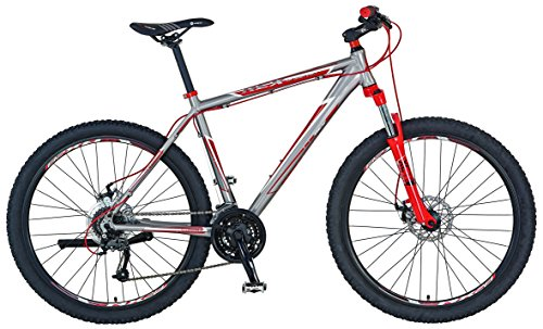 Prophete Herren Fahrrad REX Alu MTB 29 Zoll Mountainbike Bergsteiger 6.01, silbergrau, M, 53586-3111
