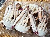 わたりがに(切りがに)ワタリガニ 渡り蟹