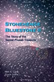 Stonehenge Bluestone II: The Story of the Secret Preseli Treasure Neil A Clark