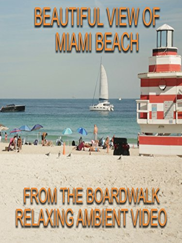Beautiful view of Miami Beach from the boardwalk relaxing ambient video